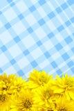 le fond fleurit le jaune de pétales Image libre de droits