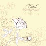 Le fond floral avec des pensées et a monté Image stock