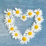Le fond floral de vintage avec le coeur de la camomille fleurit Images stock