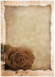 Le fond grunge de carte postale avec a monté Images stock