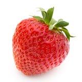 le fond a isolé le blanc de fraise Baie fraîche Images libres de droits