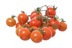 le fond a isolé des tomates blanches Photographie stock libre de droits