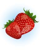le fond a isolé la fraise Images stock