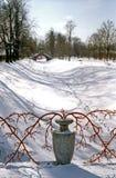 le fond s'embranche vase rouge à neige Photographie stock