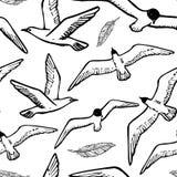 Le fond sans couture avec l'oiseau de mer de vol et la mouette dirigent l'illustration image libre de droits