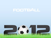 Le football 2012 Photographie stock libre de droits