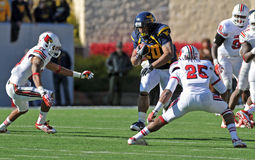 Le football américain d'université - exécutant en arrière Image libre de droits