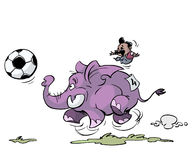 le football d'éléphant Photos libres de droits