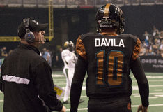 Le football d'arène de l'Arizona Rattlers Image stock