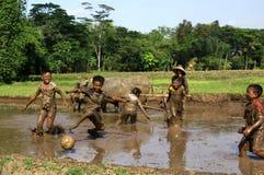 Le football dans la boue Photographie stock libre de droits
