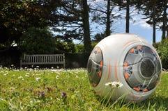 Le football dans le jardin Images libres de droits