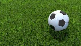Le football de ballon de football sur l'herbe photographie stock libre de droits