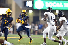 2015 le football de NCAA - GA @ WVU du sud Photo libre de droits