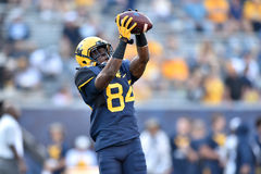 2015 le football de NCAA - GA @ WVU du sud Photos libres de droits