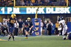 2015 le football de NCAA - GA @ WVU du sud Photos stock