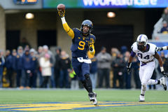 2014 le football de NCAA - TCU-WVU Images stock