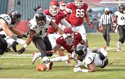 2014 le football de NCAA - Temple-Cincinnati Photo libre de droits