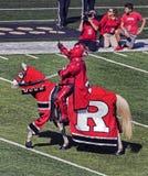 Le football de Rutgers Image libre de droits