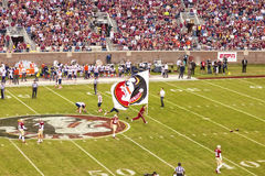 Le football de Seminole d'état de la Floride Photo stock