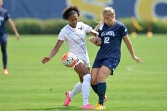 2015 le football des femmes de NCAA - Villanova @ WVU Image libre de droits