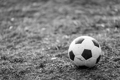 Le football sur la pelouse Photo stock