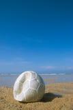 Le football sur la plage   Photo libre de droits