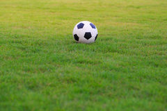 Le football sur le champ de l'herbe verte Images stock