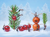 Le formiche fanno l'albero di Natale e Santa Claus per il nuovo anno Fotografia Stock Libera da Diritti