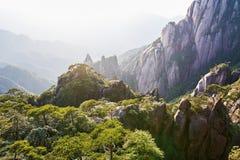 Le forset en vallée avec le nuage et la brume Photographie stock