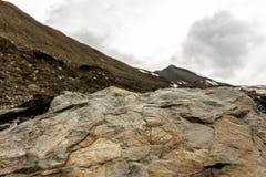 Le fossile part sur une roche sur le Spitzberg sur l'île Norvège du Svalbard Image libre de droits