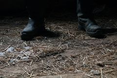Le fou dans les bottes noires dans le hangar Photo libre de droits