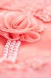 Le foyer mou de dentelle de Rose Photo libre de droits