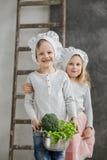 Le frère et la soeur sont des chefs Plein pot de légumes Nourriture saine légumes famille Images libres de droits