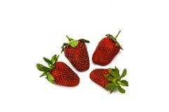 Le fragole su un piatto, le immagini delle fragole più belle e più appetitose, fragole su fondo bianco Fotografia Stock Libera da Diritti