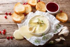 Le Français a fondu le camembert avec le plan rapproché de pain grillé et de sauce à la canneberge photographie stock libre de droits