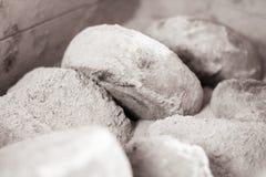 Le fromage du mouton italien mûr photo libre de droits