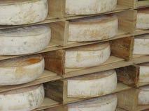 Le fromage français a appelé Saint-Nectaire Photographie stock