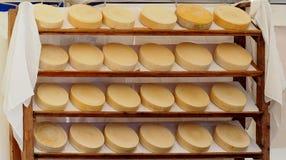 Le fromage italien organique roule sur une étagère d'un marché rural Photographie stock libre de droits
