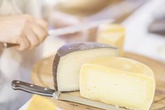 Le fromage se dirige sur le compteur du marché, le fromage de ventes de vendeur, têtes de fromage de coupe sur le panneau en bois Photos stock