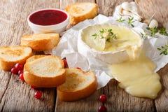 Le fromage traditionnel français de camembert de nourriture avec l'ail, thym est s photos libres de droits