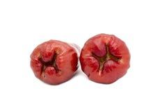 Le fruit asiatique, jamboses portent des fruits sur le fond blanc Image libre de droits