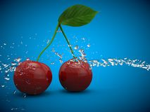 Le fruit de cerise de cerises porte des fruits rouge sain illustration libre de droits