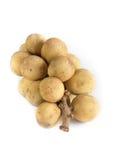 Le fruit de Longkong, de Langsat ou de Lanzones est endémique à Asie du Sud-Est images stock