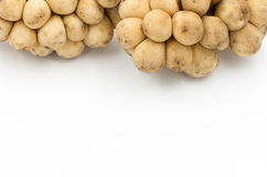 Le fruit de Longkong ou le parasiticum de Lansium est fruit tropical sur le blanc images libres de droits