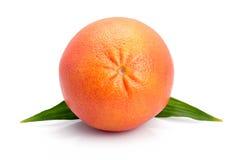 Le fruit de pamplemousse avec la lame verte a isolé Photographie stock
