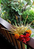 Le fruit et les fleurs font bon accueil au panier photos stock