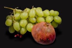Le fruit frais pour vous Images stock