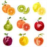 Le fruit a placé 2 illustration stock