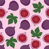 Le fruit pourpre de figue avec le vert laisse le modèle doux d'été sur le rose Photographie stock