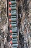 Le fusil rouge de balles Photographie stock libre de droits